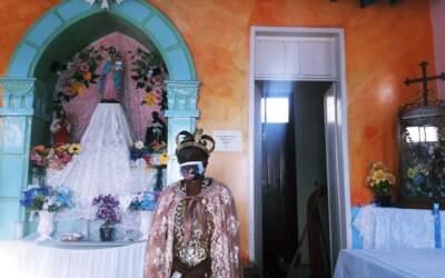 Festa de Nossa Senhora do Rosário 2020; confira fotos